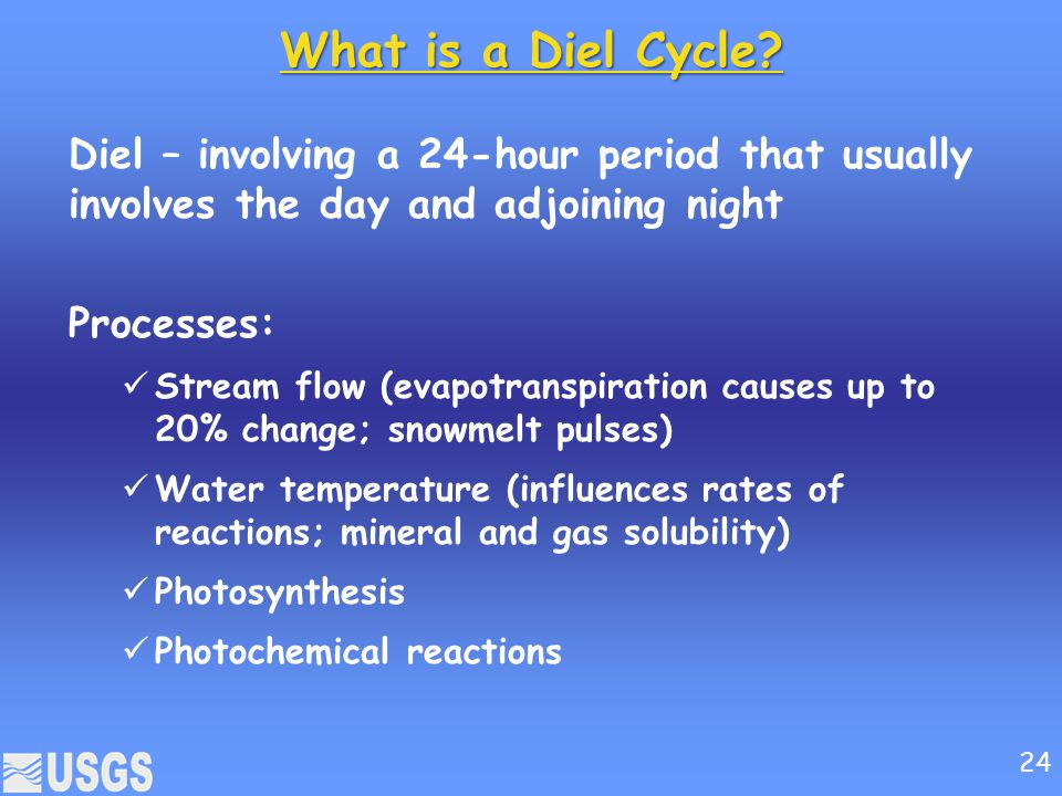 What is a Diel Cycle Diel – involving a 24-hour period that usually involves the day and adjoining night.