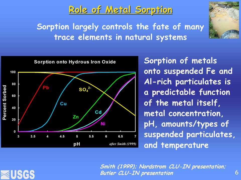 Role of Metal Sorption Sorption largely controls the fate of many