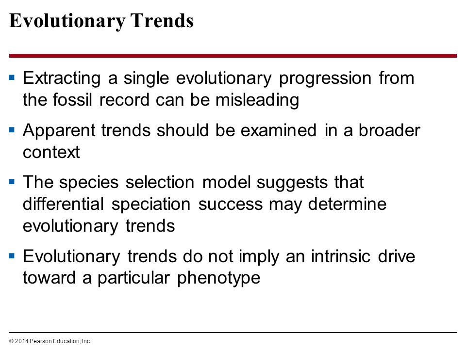 Evolutionary Trends Extracting a single evolutionary progression from the fossil record can be misleading.