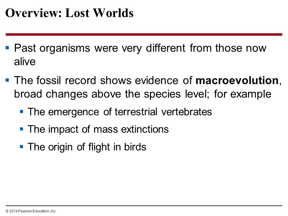 Overview: Lost Worlds Past organisms were very different from those now alive.