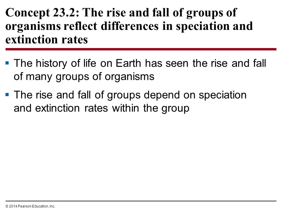 Concept 23.2: The rise and fall of groups of organisms reflect differences in speciation and extinction rates