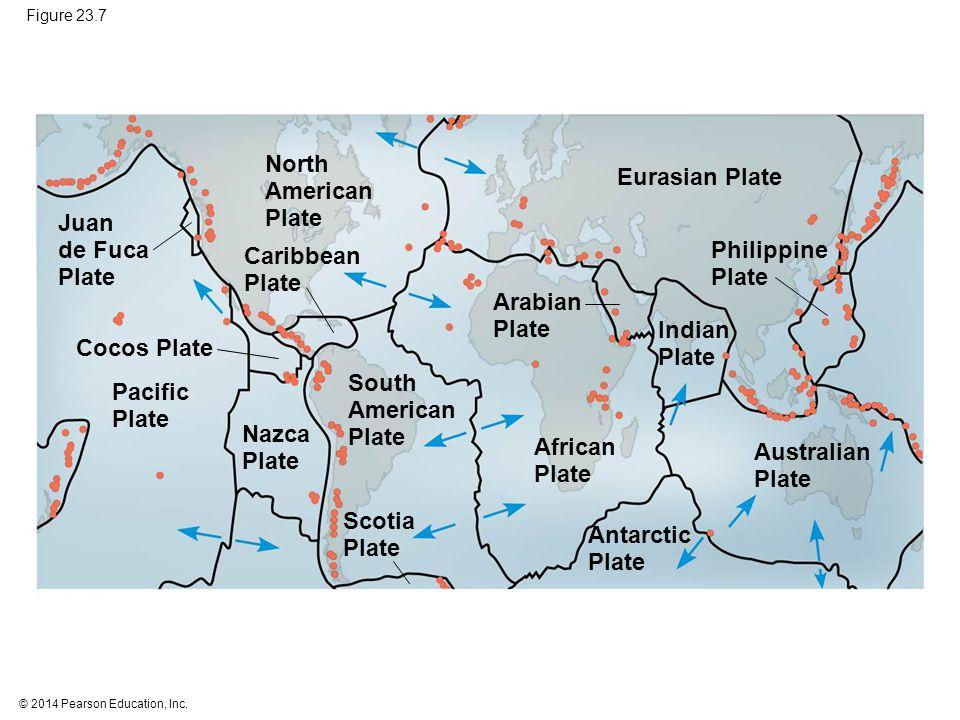 North American Plate Eurasian Plate Juan de Fuca Plate Caribbean Plate