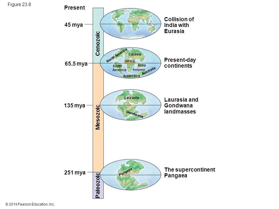 Present Collision of India with Eurasia 45 mya Cenozoic Present-day