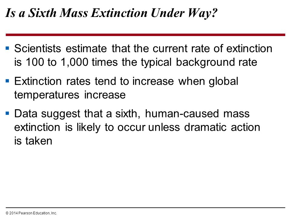 Is a Sixth Mass Extinction Under Way