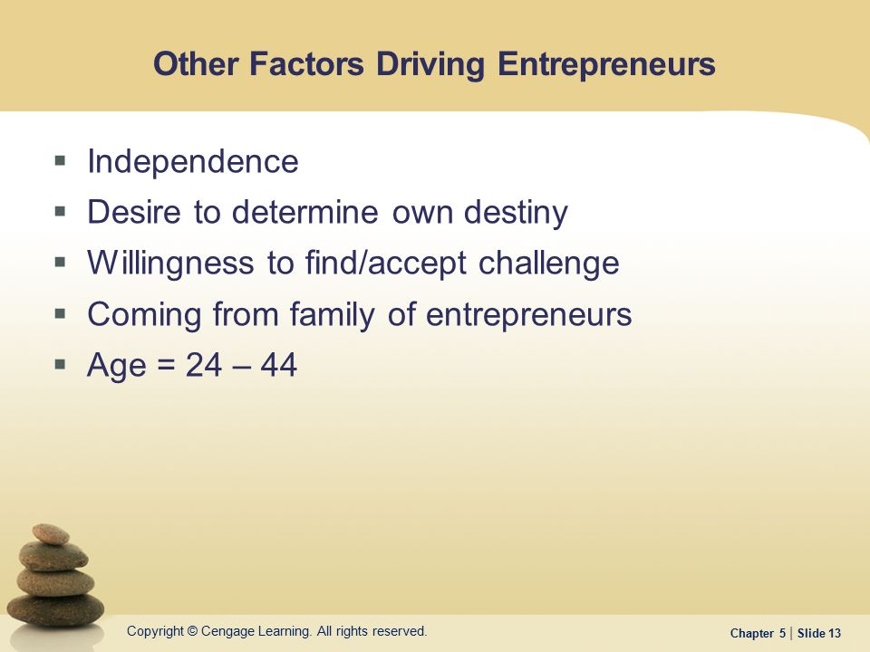 Other Factors Driving Entrepreneurs