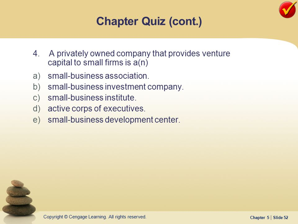 Chapter Quiz (cont.) 4. A privately owned company that provides venture capital to small firms is a(n)