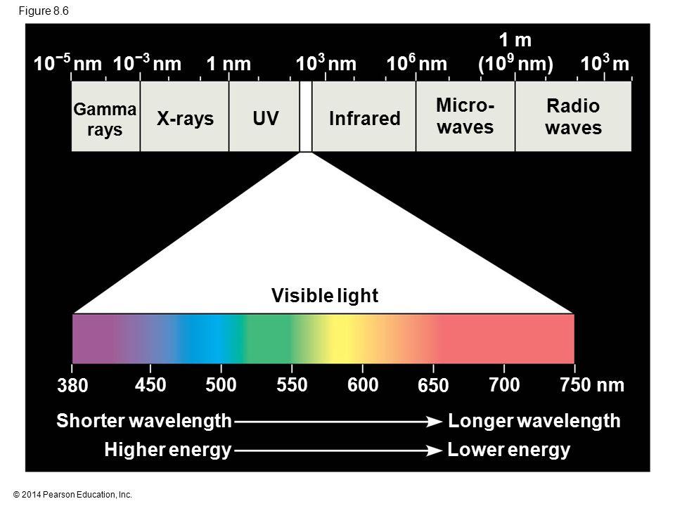 1 m (109 nm) 10−5 nm 10−3 nm 1 nm 103 nm 106 nm 103 m Micro- waves