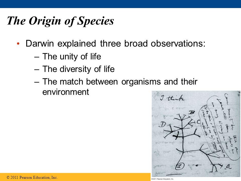 The Origin of Species Darwin explained three broad observations: