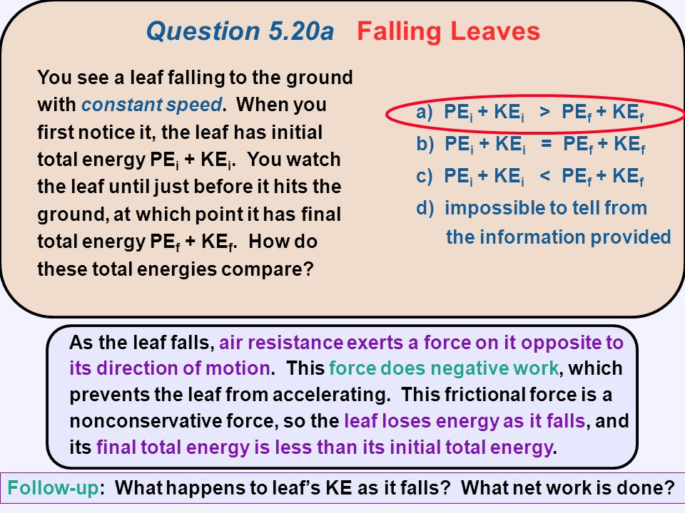 Question 5.20a Falling Leaves