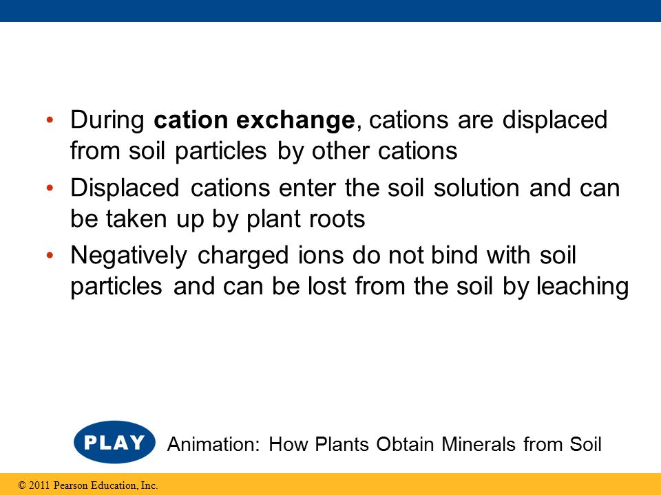 During cation exchange, cations are displaced from soil particles by other cations