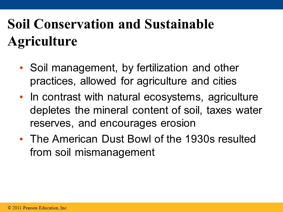 Soil Conservation and Sustainable Agriculture