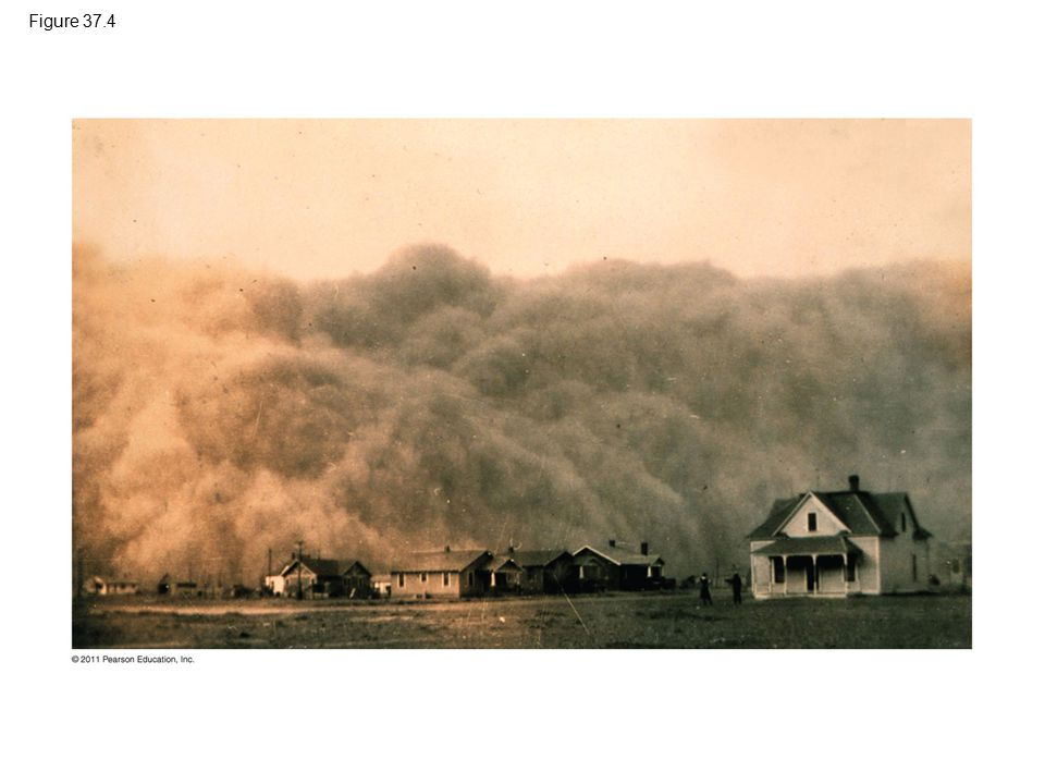 Figure 37.4 Figure 37.4 A massive dust storm in the American Dust Bowl during the 1930s.
