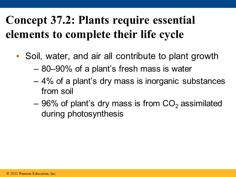 Concept 37.2: Plants require essential elements to complete their life cycle