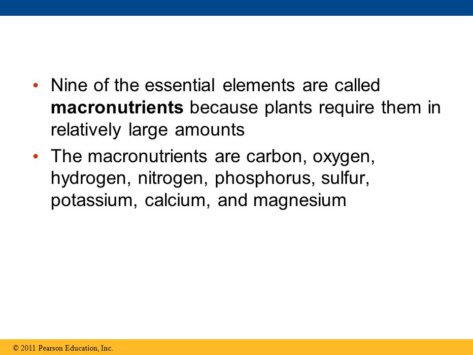 Nine of the essential elements are called macronutrients because plants require them in relatively large amounts