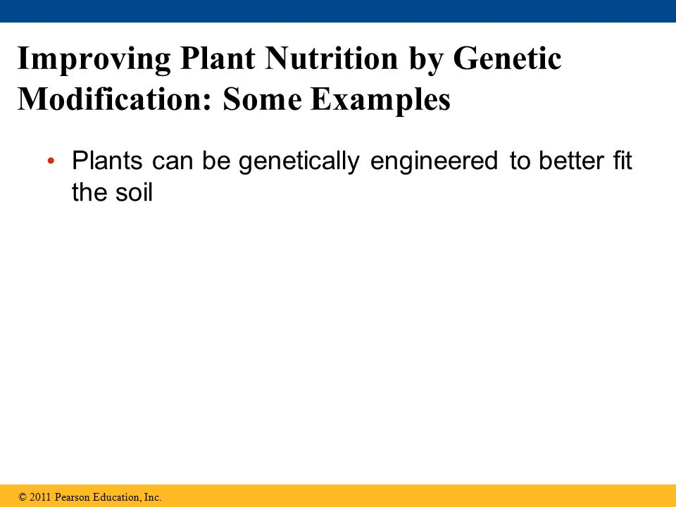 Improving Plant Nutrition by Genetic Modification: Some Examples