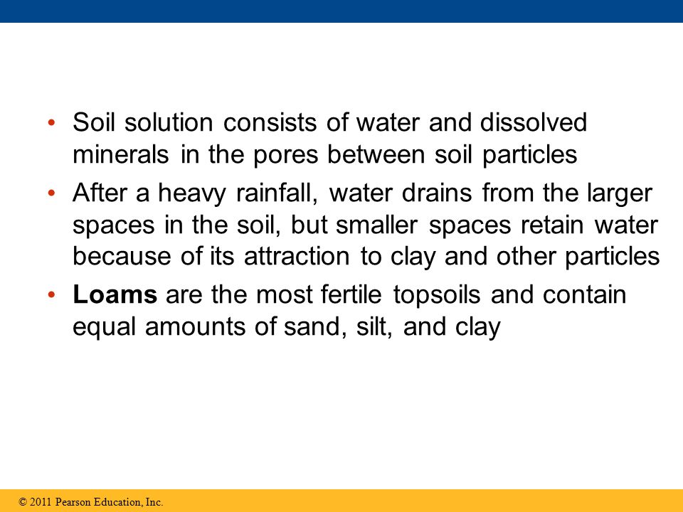 Soil solution consists of water and dissolved minerals in the pores between soil particles