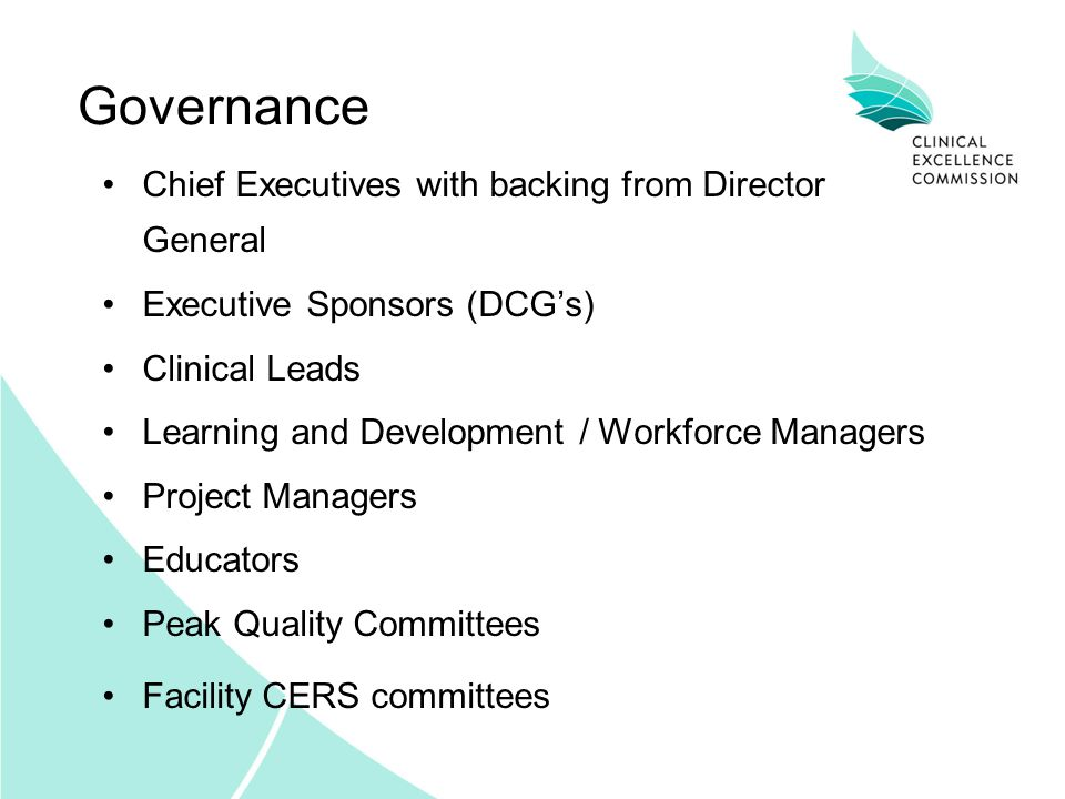 Governance Chief Executives with backing from Director General