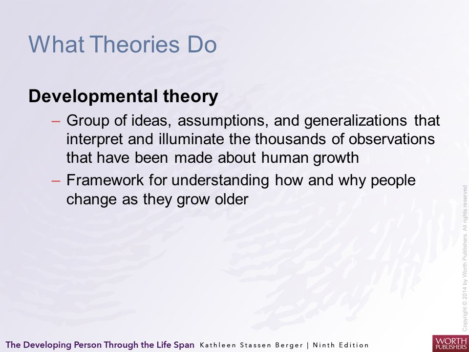 What Theories Do Developmental theory