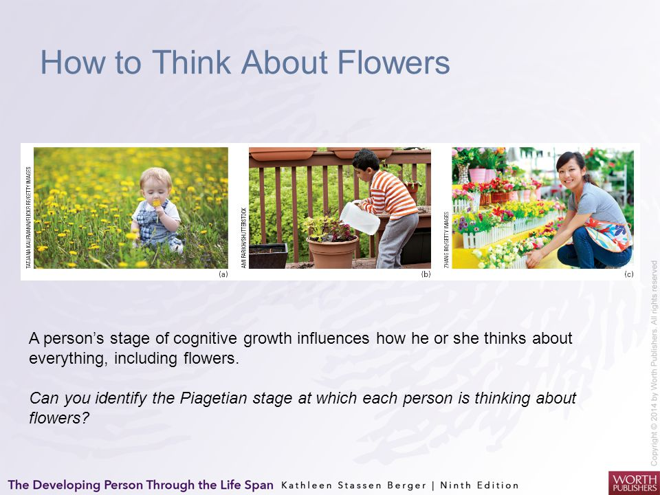 How to Think About Flowers