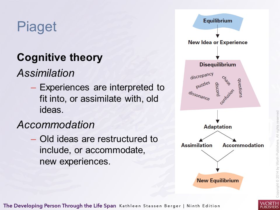 Piaget Cognitive theory Assimilation Accommodation