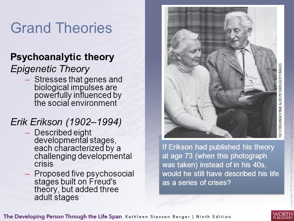 Grand Theories Psychoanalytic theory Epigenetic Theory