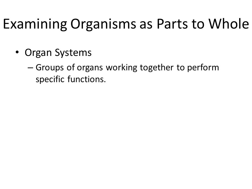 Examining Organisms as Parts to Whole