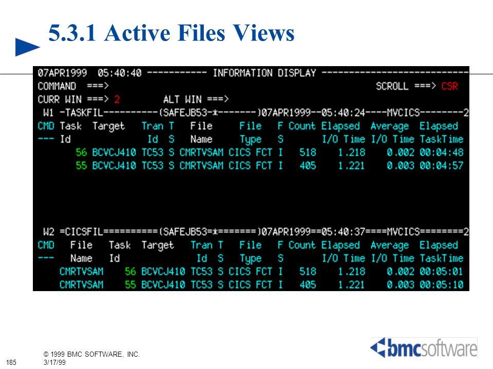 5.3.1 Active Files Views