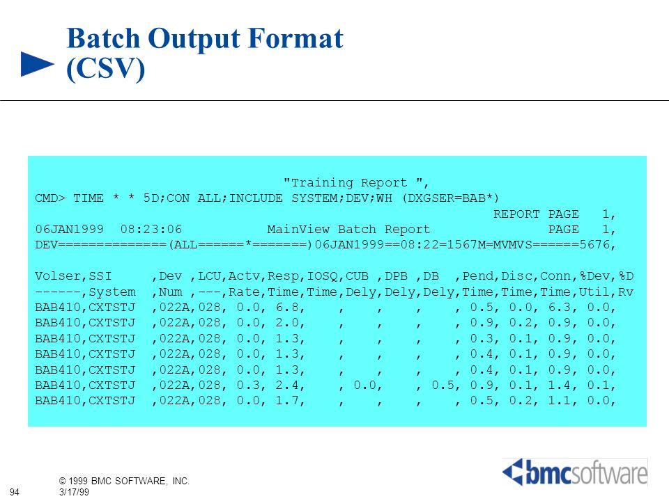 Batch Output Format (CSV)
