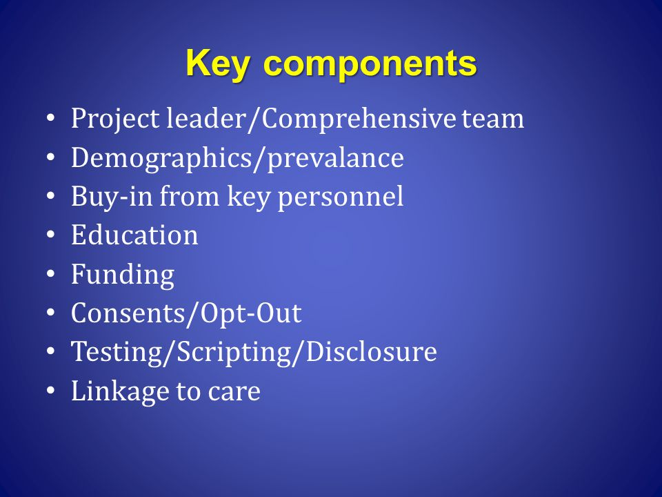 Key components Project leader/Comprehensive team