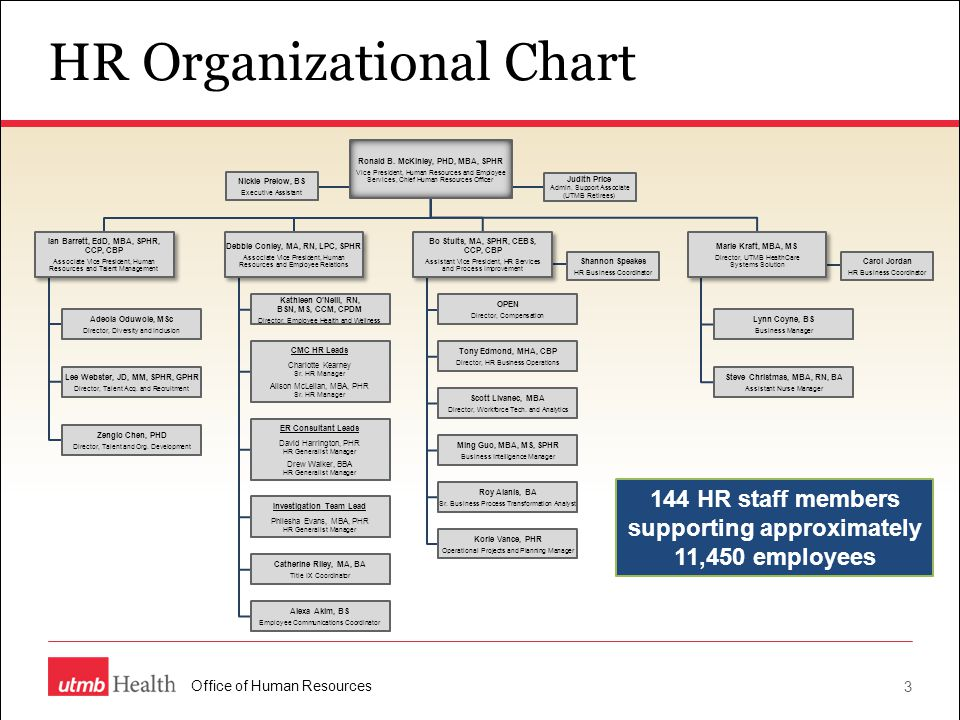 organisational structure and managing hr Time they leave the organization human resource management is about enabling staff to main areas of human resources management 2 organisational structure.