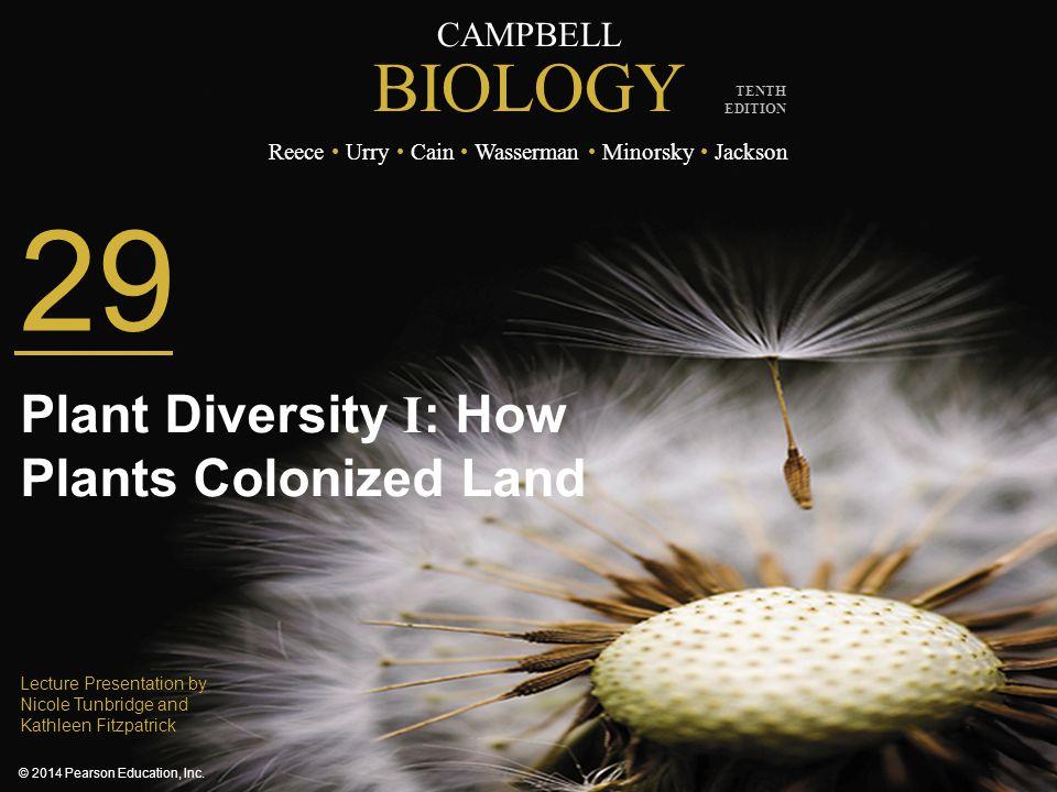 29 Plant Diversity I: How Plants Colonized Land