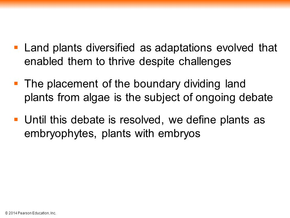 Land plants diversified as adaptations evolved that enabled them to thrive despite challenges