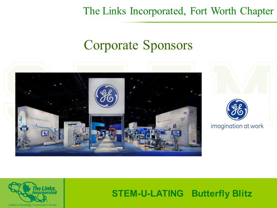 STEM-U-LATING Butterfly Blitz