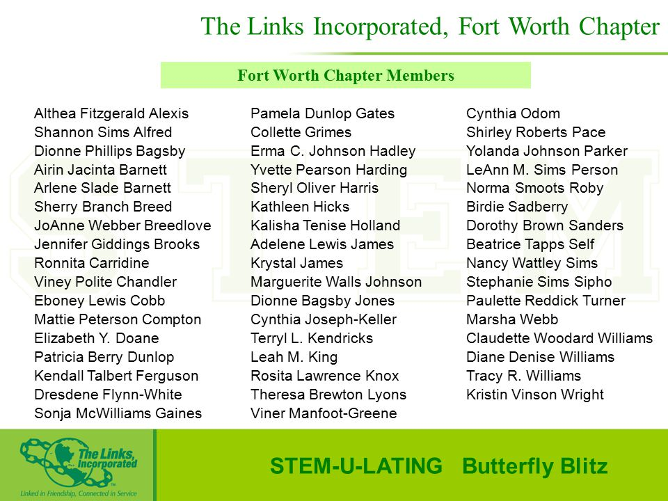 Fort Worth Chapter Members STEM-U-LATING Butterfly Blitz