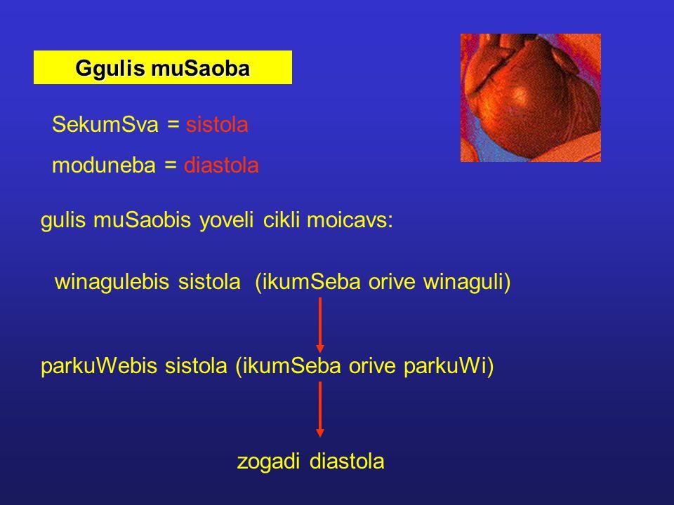 Ggulis muSaoba SekumSva = sistola. moduneba = diastola. gulis muSaobis yoveli cikli moicavs: winagulebis sistola (ikumSeba orive winaguli)