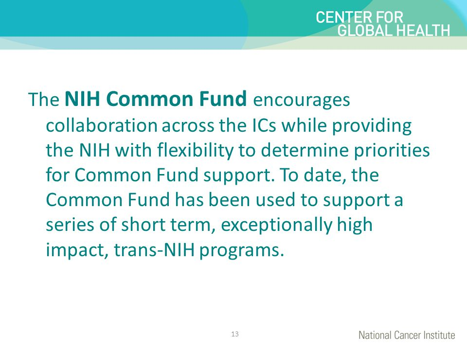 The NIH Common Fund encourages collaboration across the ICs while providing the NIH with flexibility to determine priorities for Common Fund support.