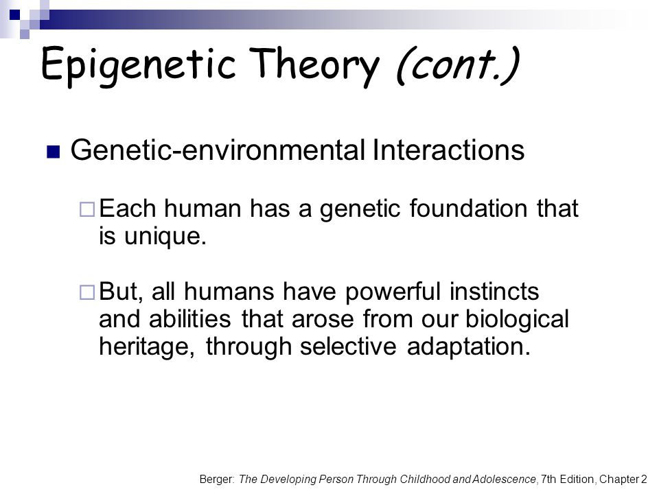 Epigenetic Theory (cont.)