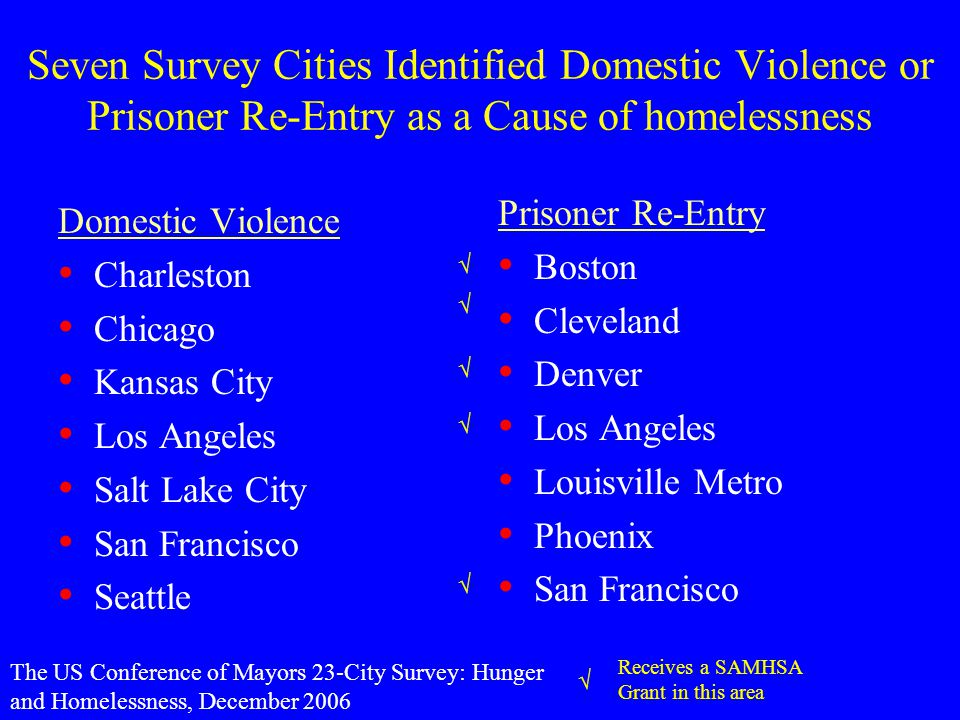 Seven Survey Cities Identified Domestic Violence or Prisoner Re-Entry as a Cause of homelessness