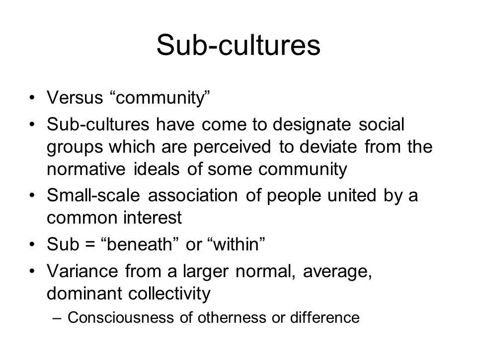 Sub-cultures Versus community