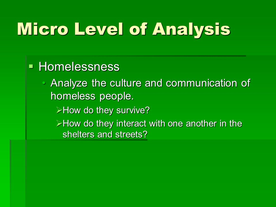 Micro Level of Analysis