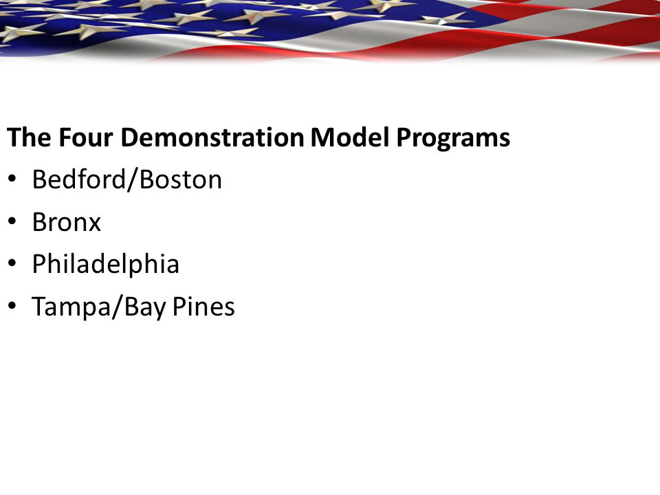 The Four Demonstration Model Programs