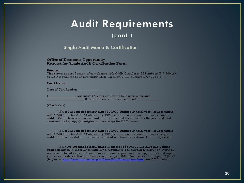 Audit Requirements (cont.)