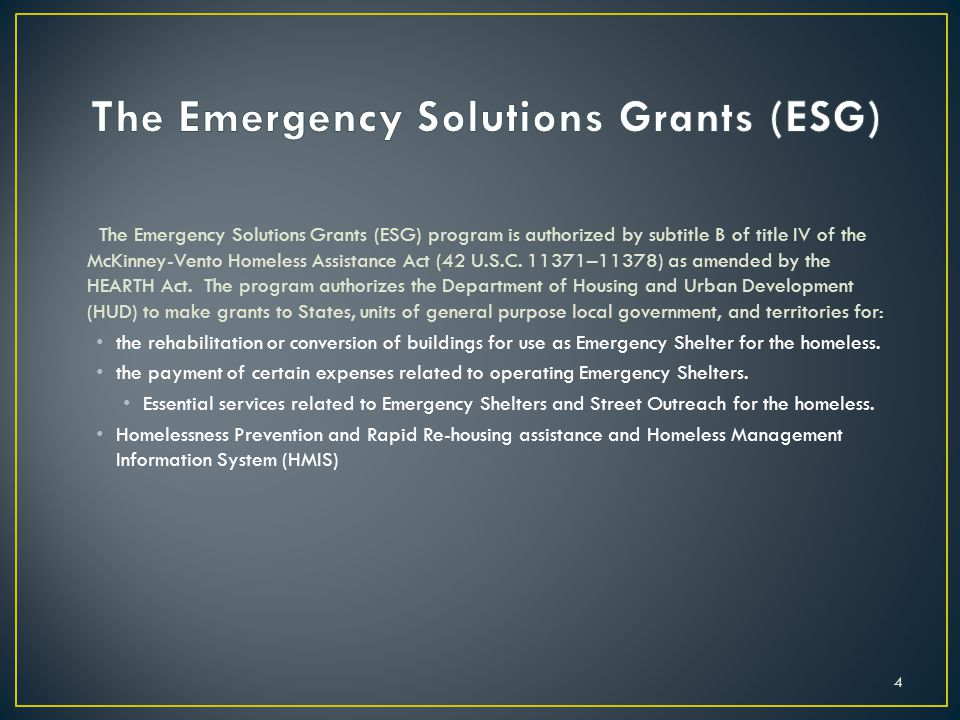 The Emergency Solutions Grants (ESG)