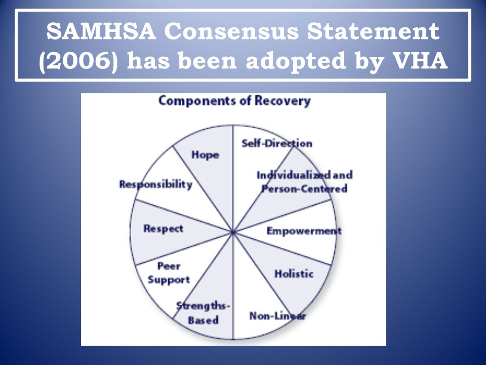 SAMHSA Consensus Statement (2006) has been adopted by VHA