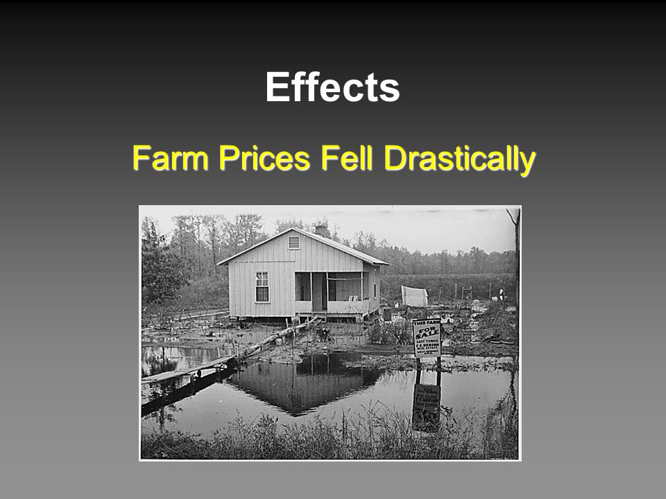 Farm Prices Fell Drastically