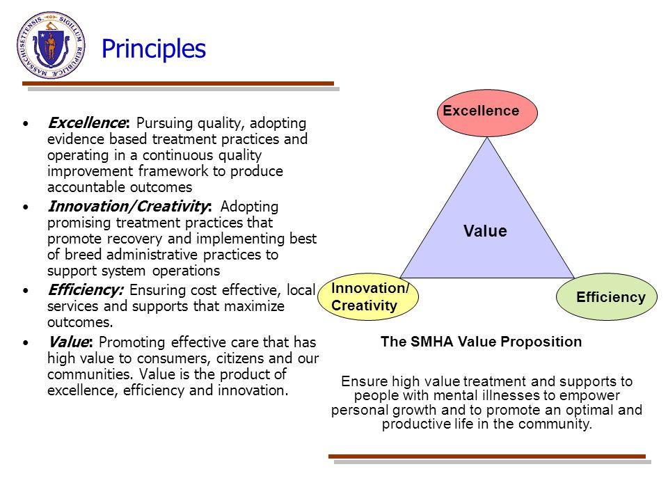 Principles Value Excellence