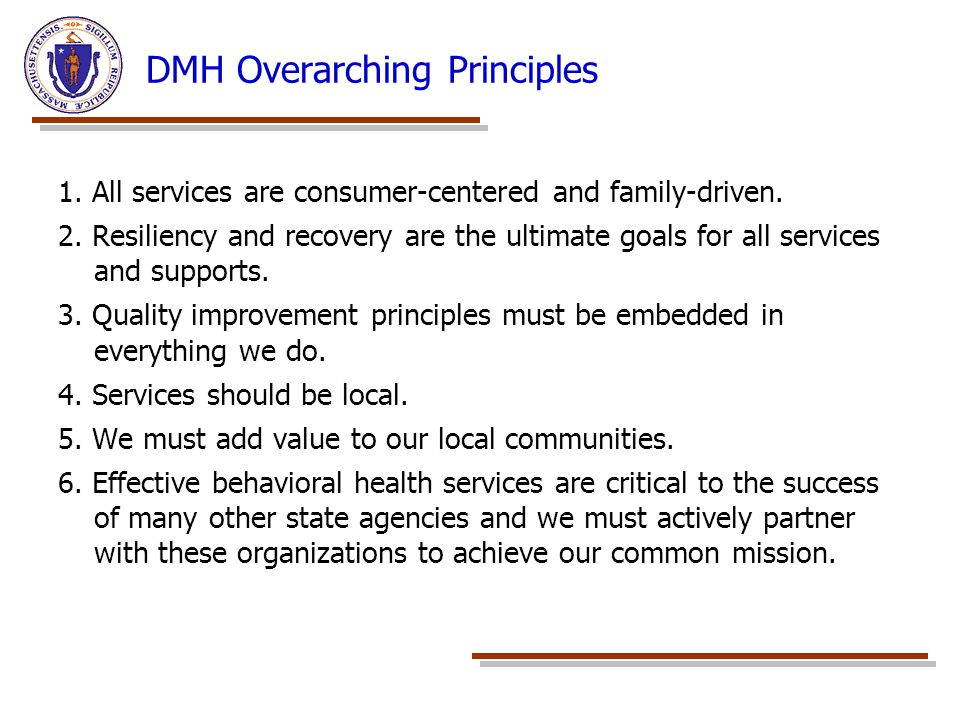 DMH Overarching Principles