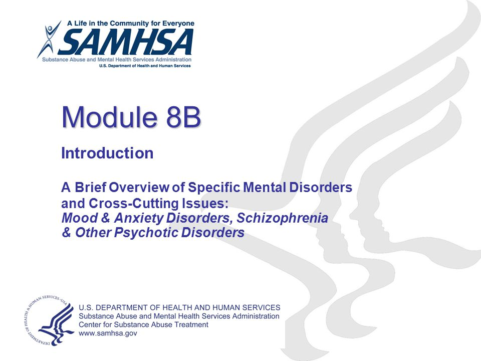 Module 8B Introduction. A Brief Overview of Specific Mental Disorders and Cross-Cutting Issues: Mood & Anxiety Disorders, Schizophrenia.