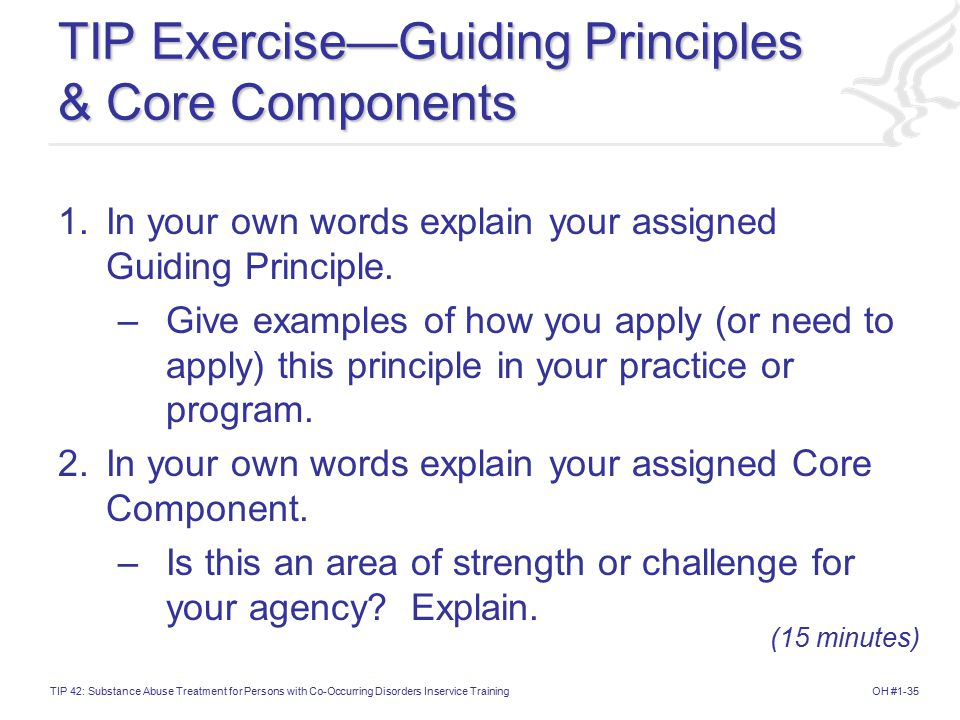 TIP Exercise—Guiding Principles & Core Components