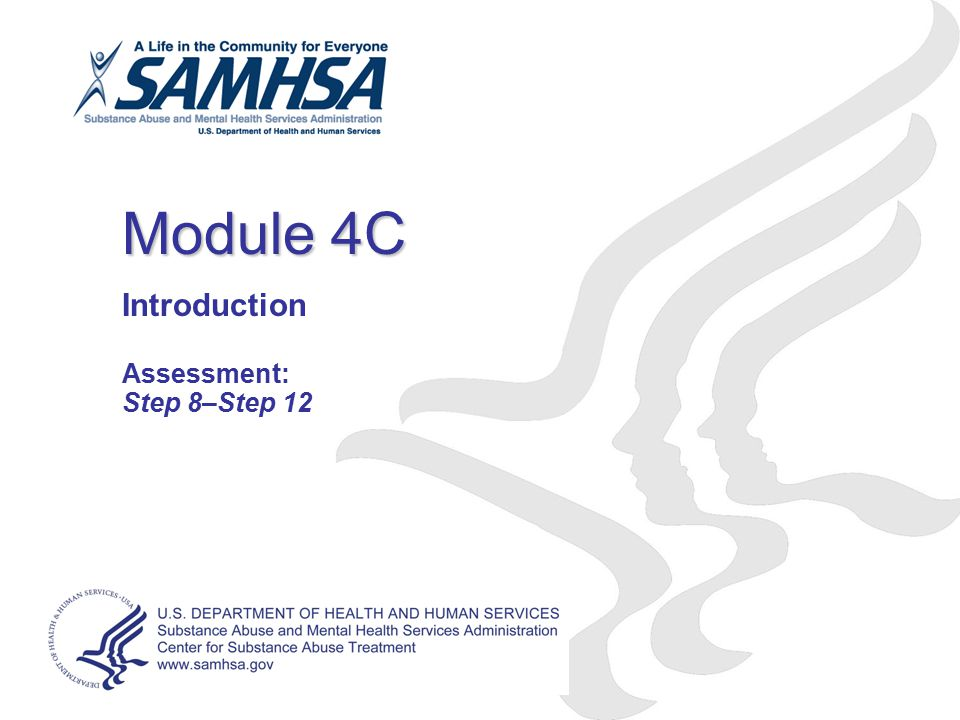 Introduction Assessment: Step 8–Step 12